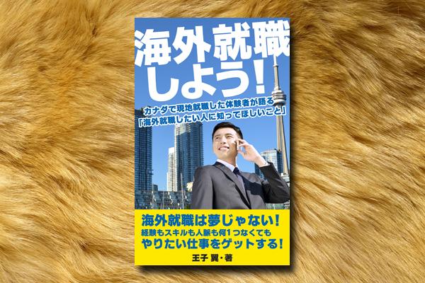 電子書籍カバーデザイン(ビジネス/海外関連)